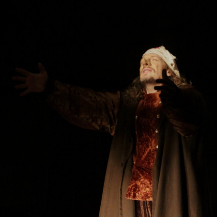 Cyrano « Ne me soutenez pas. Personne. Rien que l'arbre. » (2011)