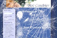 Aperçu brisé du thème 2009 du site