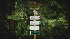 directions-milan-seitler-714400-unsplash.jpg