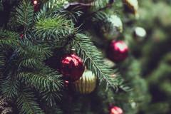 Boules rouges et or sur des branches de sapin, par Tj Holowaychuk sur Unsplash.com